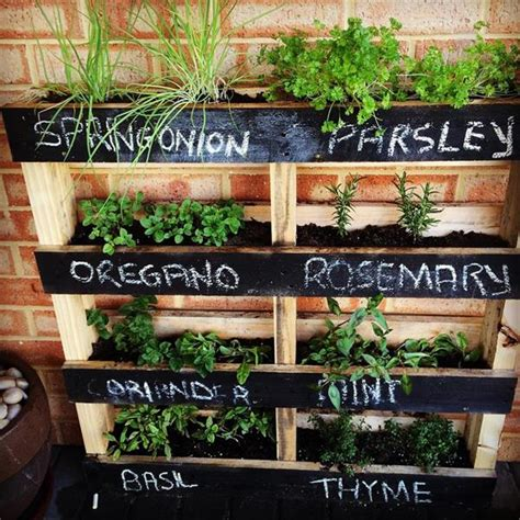 diy herb garden ideas 20 beautiful diy vertical herb garden ideas 2015