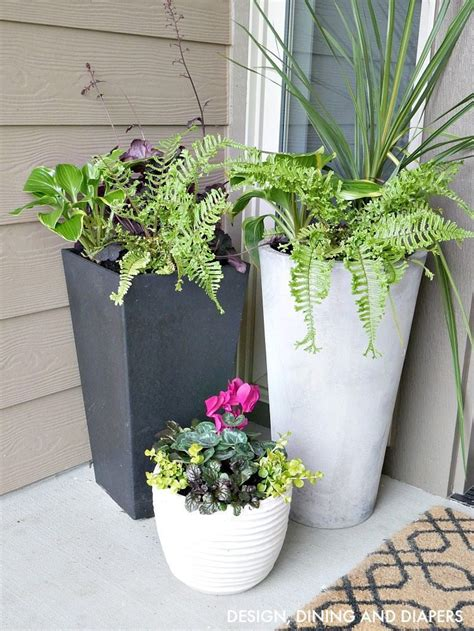 Porch Planter Ideas by Front Porch Planter Ideas Whiteaker