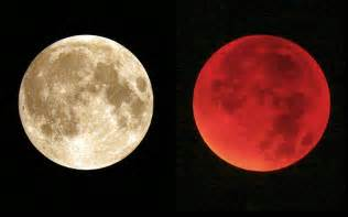 Where Does Moon Live Best Pictures From The Blood Moon Live And Learn