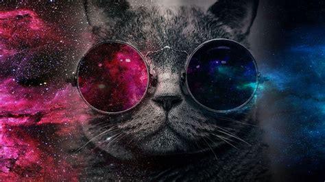 cat wallpaper imgur galaxy cat images galaxy cat galaxy cat album on imgur