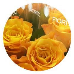 franchising fiori negozi di fiori e piante fiorito