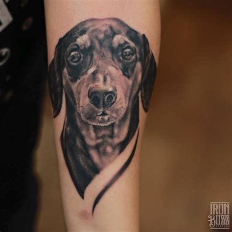 realistic dog portrait dog tattoo realistic dogs pets