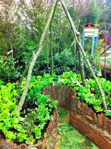 Permaculture Garden Layout Permaculture Garden Design Images