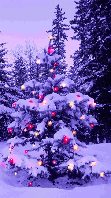 christmas tree snow wallpaper 73 images