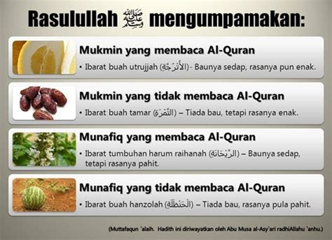 Amalan Amalan Untuk Meraih Tingkatan Tertinggi Surga mukmin yang membaca al qur an ibarat buah utrujah yang wangi manis panjimas