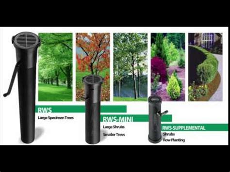 rain bird rws root watering system youtube