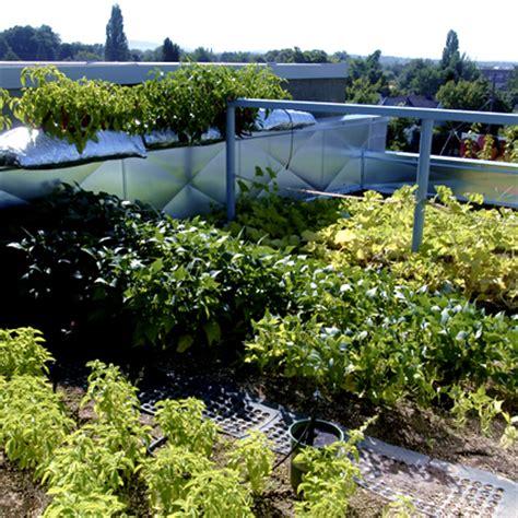 come realizzare un giardino come realizzare un giardino pensile o un tetto verde in 5