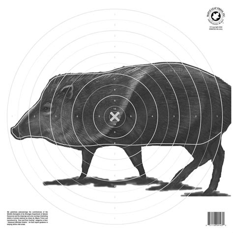 printable animal shooting targets maple leaf press inc nfaa official animal paper targets