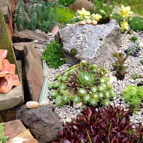Mini Rock Garden Beautiful Mini Rock Garden Design With Shrubs And Succulents Artenzo