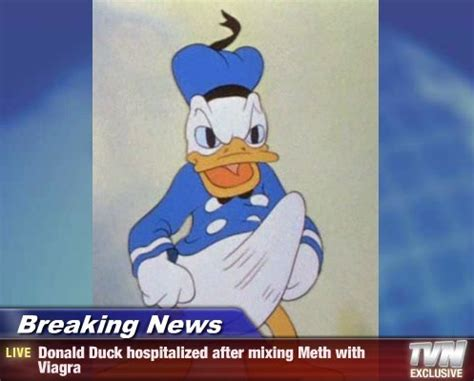 donald duck boner know your meme