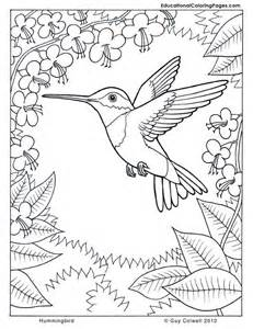 nature coloring pages nature coloring page az coloring pages