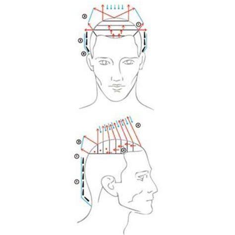 mens haircuts diagrams 70 best diagram haircut images on pinterest hair cut