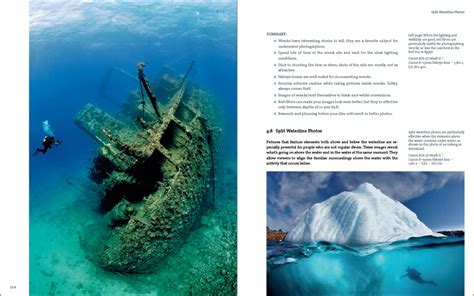 underwater photography book book review tobias friedrich s underwater photography