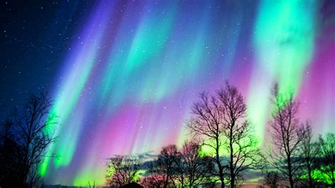 can you see the northern lights in maine see the northern lights before they go dim