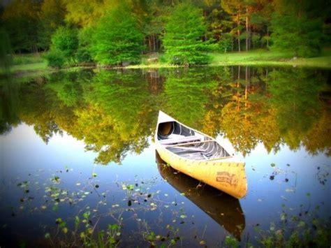 nature free stock photos download (18,963 free stock