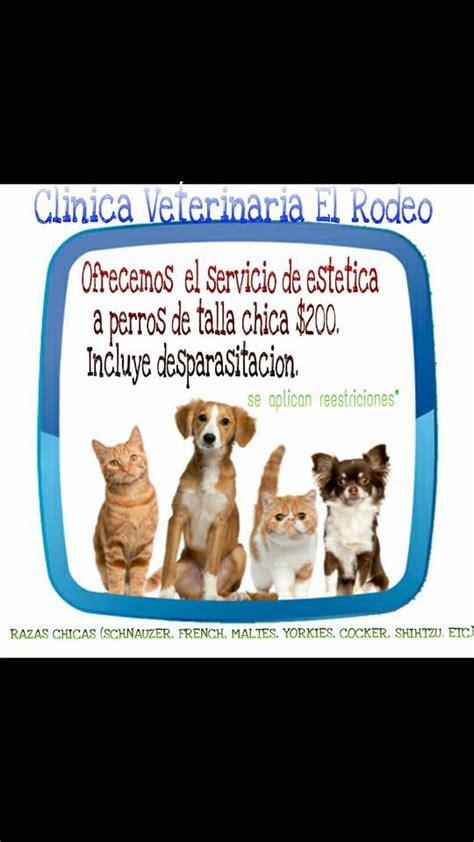 granero y veterinario tijuana el rodeo clinica veterinaria home facebook