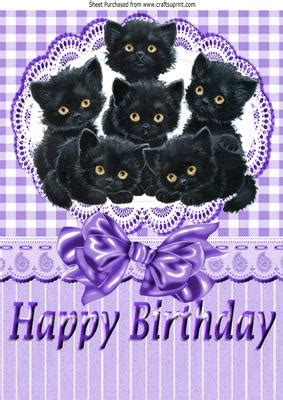 six cute little black kittens on lace with bow a4