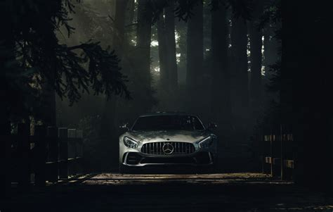 mercedes benz amg gt forest hd cars  wallpapers images backgrounds   pictures