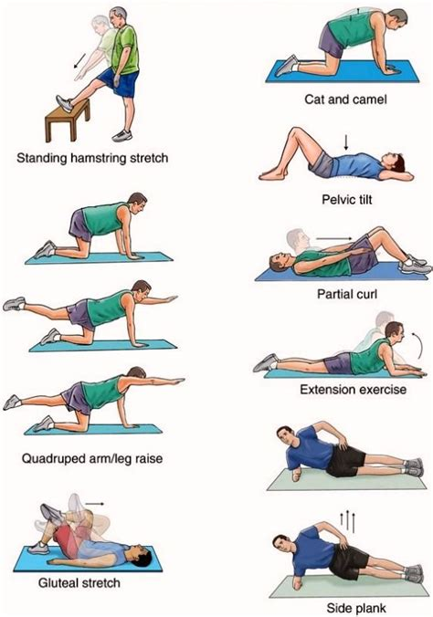 5 for building strength lower back exercises back exercises