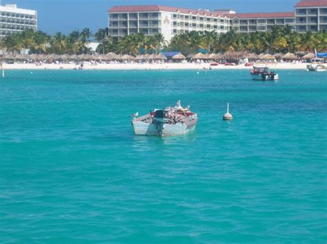 boat rentals near my location boat near resort picture of aruba caribbean tripadvisor