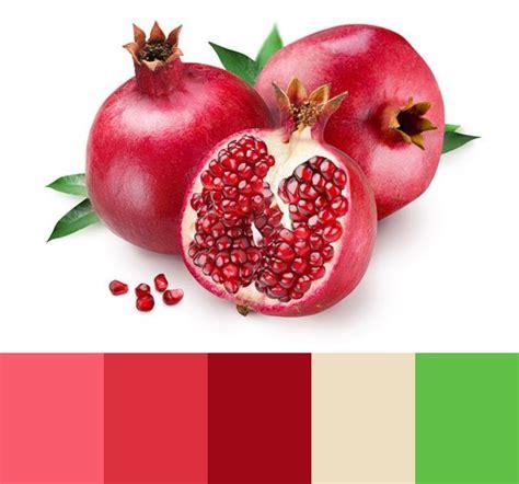 pomegranate color pomegranate color palette sz 237 n food pomegranate juice