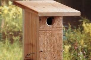 Interested in attracting bluebirds these diy bird house plans will
