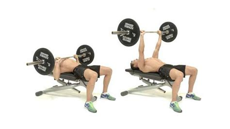 barbell for bench press 5 best chest exercises with how to do guide