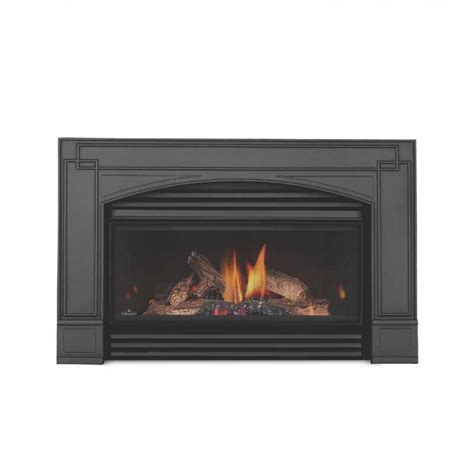 Napolean Fireplace Inserts by Napoleon Gi3600 4n Basic Gas Fireplace Insert W