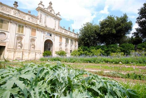 villa borghese giardini foto villa borghese e suoni vegetali al parco dei