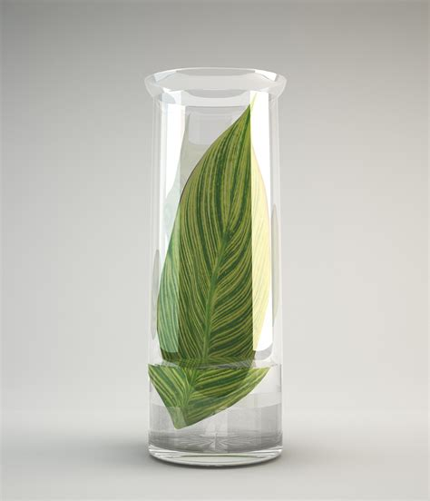 3d Vase by Vase Glass Free 3d Model Max Fbx Cgtrader