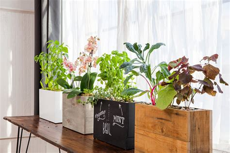 Modern Sprout Planter Review by The Coolest Best Gifts For Gardeners