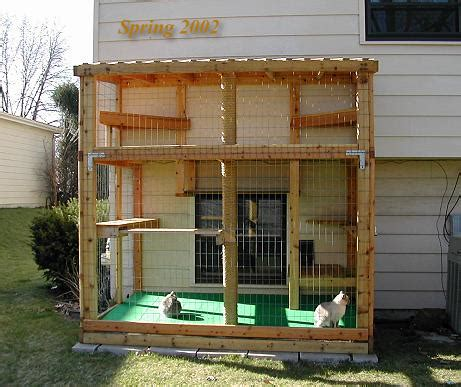 Harga Box Hers by Behavior How To Let An Indoor Cat Some Outdoors