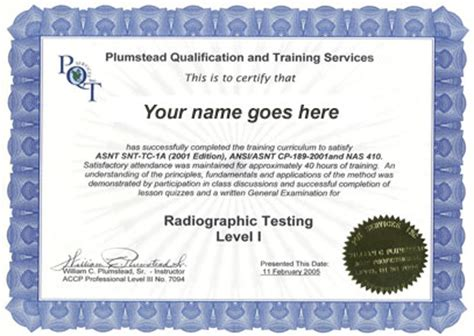 8 Training Certificate Templates Excel Pdf Formats Trainer Certificate Template