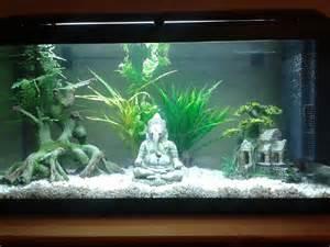donnez 224 votre aquarium un style asiatique