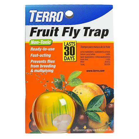 fruit fly trap terro 174 fruit fly trap looks like an apple