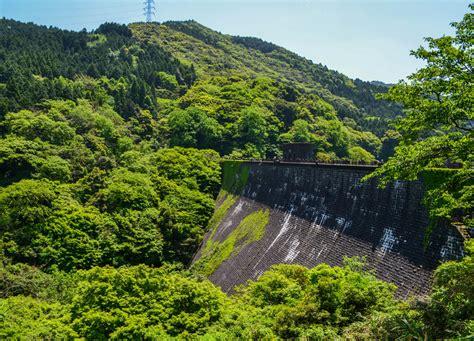 kawachi fuji garden travel to kawachi fuji garden and wisteria tunnel in