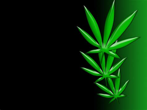wallpaper for android weed weed poster wallpaper art black backgrounds wallpaper