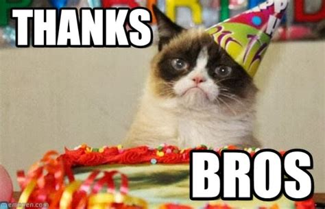 Thank You Cat Meme - thanks grumpy cat birthday meme on memegen