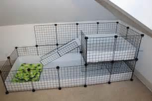 cc for home diy c c cage alexandria s animals
