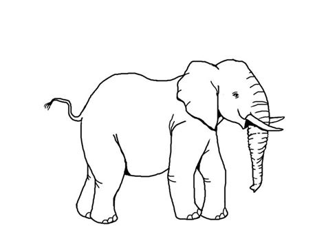 printable animal shapes free african animal template shapes crafts colouring pages