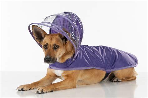 raincoat for dogs raincoat purple rainbow line