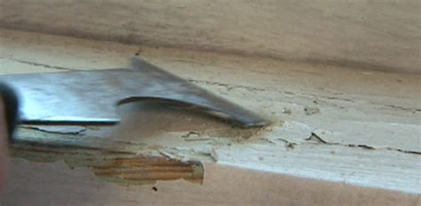 dangers of lead paint in your home today s homeowner