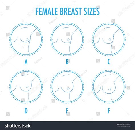 small round breast set contour round icons different female stock vector