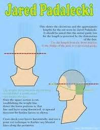 farrah haircut instructions and diagram 63 best images about diagram haircut on pinterest