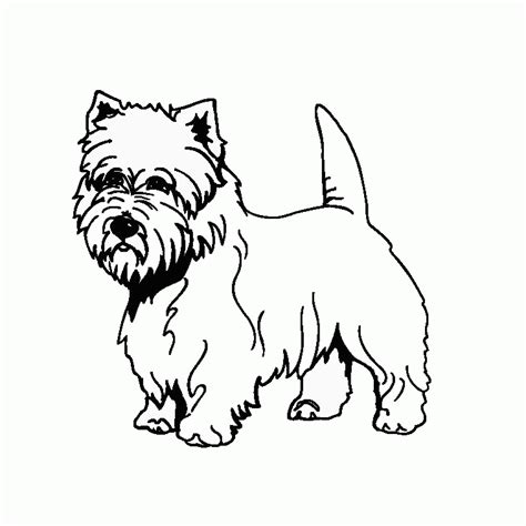 Westie Dog Coloring Pages Coloring Pages For Kids
