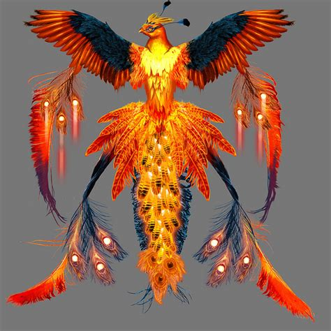 real phoenix bird a real phoenix bird in america pictures to pin on