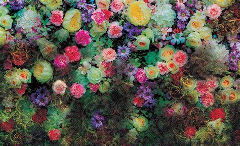 immagini fiori colorati carta da parati fiori colorati europosters it