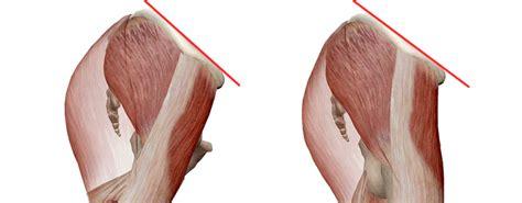 muscoli sedere curva lombare e glutei project invictus