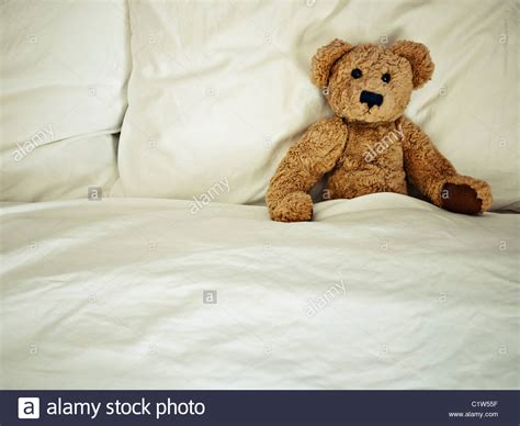 bear bed teddy bear in bed stock photo royalty free image