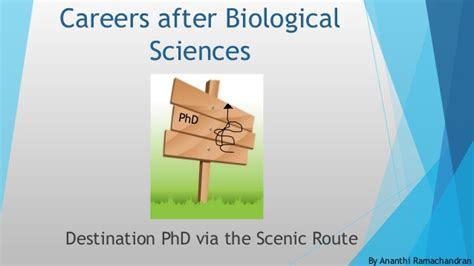 Mba After Phd In Biology by Destination Phd Via The Scenic Route